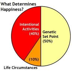 Happiness set-point-Chart -lyubomirsky