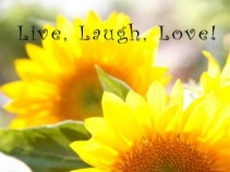 Sun_flowers- Live-laugh-Love
