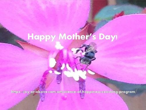 Mothers Day 01