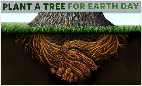 Plant a Tree for Earth Day