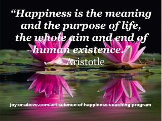 Happiness is Meaning of life